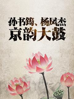 孙书筠、杨凤杰京韵大鼓