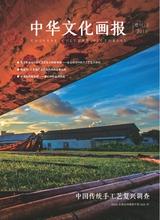中华文化画报(增刊)