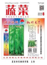 蔬菜2019年8月第8期