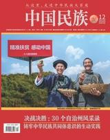 中国民族2020年12月第12期