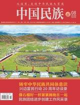 中国民族2020年8月第8期