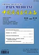 中国疼痛医学杂志