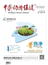 中国动物保健2020年6月第6期