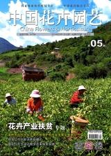 中国花卉园艺2019年3月第5期