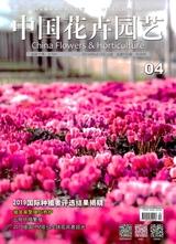 中国花卉园艺2019年2月第4期