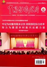 中国合作经济2020年9月第9期