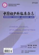 中国妇产科临床杂志2019年5月第3期