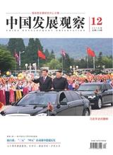 中国发展观察2019年6月第12期