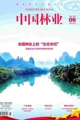 中国林业2020年6月第6期