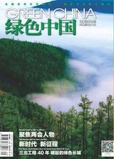 绿色中国(A版)