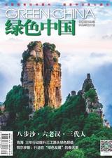 绿色中国(A版)2019年5月第5期