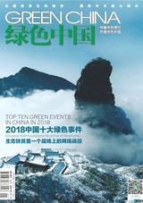 绿色中国(A版)2019年1月第1期