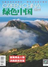 绿色中国(A版)2020年5月第5期