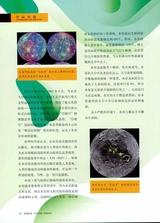 探索科学.百科2019年6月第6期