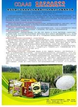 农业科技通讯2019年4月第4期